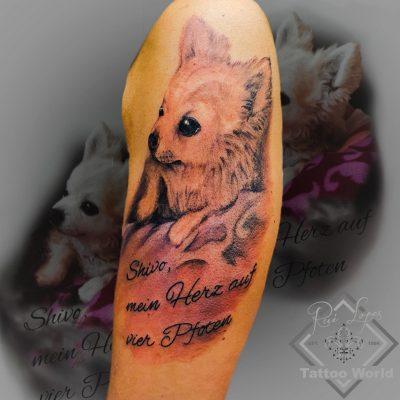 Tattoo Hund
